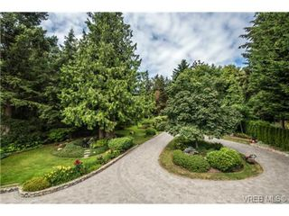 Photo 16: 8381 Lochside Drive in SAANICHTON: CS Turgoose Single Family Detached for sale (Central Saanich)  : MLS®# 366040