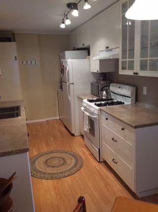 Photo 6: 11817 GLENHURST Street in Maple Ridge: Cottonwood MR House for sale : MLS®# R2094523