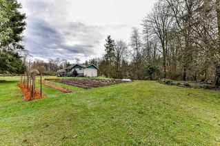 "Photo 6: 19834 80 Avenue in Langley: Willoughby Heights House for sale in ""Jericho Neighborhood Plan"" : MLS®# R2232726"