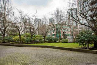 Photo 17: 427 1185 PACIFIC Street in Coquitlam: North Coquitlam Condo for sale : MLS®# R2245688