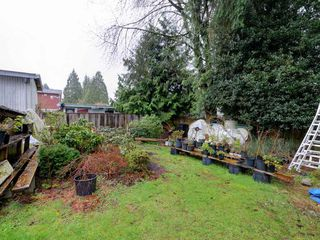 Photo 9: 584 HARRISON Avenue in Coquitlam: Coquitlam West House for sale : MLS®# R2263564