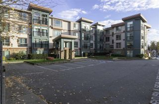 "Photo 1: 404 33485 SOUTH FRASER Way in Abbotsford: Central Abbotsford Condo for sale in ""CITADEL RIDGE"" : MLS®# R2320305"