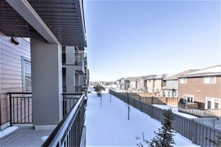 Photo 22: 207 1004 Rosenthal Boulevard NW in Edmonton: Zone 58 Condo for sale : MLS®# E4148313