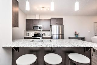 Photo 10: 207 1004 Rosenthal Boulevard NW in Edmonton: Zone 58 Condo for sale : MLS®# E4148313
