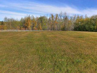 Photo 30: 7 52420 RANGE ROAD 13: Rural Parkland County House for sale : MLS®# E4150411