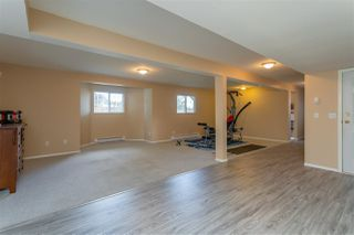 Photo 16: 20120 120A Avenue in Maple Ridge: Northwest Maple Ridge House for sale : MLS®# R2378183