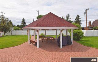 Photo 29: 323 6220 FULTON Road in Edmonton: Zone 19 Condo for sale : MLS®# E4162742