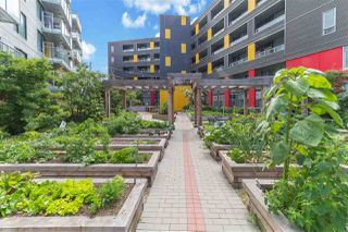 """Photo 20: 505 417 GREAT NORTHERN Way in Vancouver: Strathcona Condo for sale in """"CANVAS"""" (Vancouver East)  : MLS®# R2385413"""