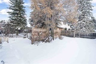 Photo 19: 11704 44 Avenue in Edmonton: Zone 16 House for sale : MLS®# E4179750