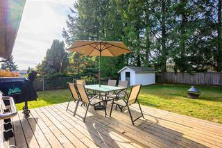 Photo 19: 3229 275A Street in : Aldergrove Langley House for sale (Langley)  : MLS®# R2418832