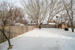 Photo 32: 231 Fairlane Avenue in Winnipeg: Crestview Residential for sale (5H)  : MLS®# 202004066