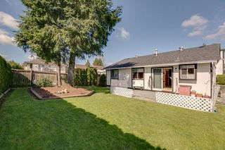 Photo 21: 22826 124B Avenue in Maple Ridge: East Central House for sale : MLS®# R2051417