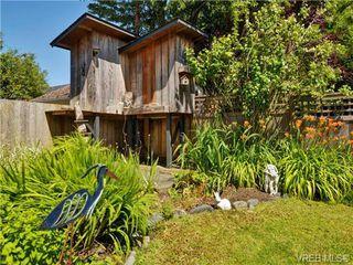Photo 18: 345 LINDEN Avenue in VICTORIA: Vi Fairfield West Single Family Detached for sale (Victoria)  : MLS®# 366833