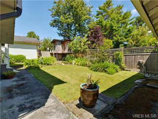 Photo 19: 345 LINDEN Ave in VICTORIA: Vi Fairfield West Single Family Detached for sale (Victoria)  : MLS®# 735323