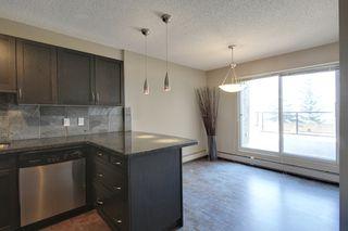 Photo 13: 8 218 Village Terrace SW in Calgary: Condo for sale : MLS®# C3626919