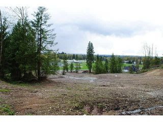 """Photo 3: 31981 KENNEY Avenue in Mission: Mission BC Land for sale in """"SPORTS PARK"""" : MLS®# F1436723"""