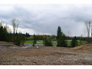 """Photo 4: 31981 KENNEY Avenue in Mission: Mission BC Land for sale in """"SPORTS PARK"""" : MLS®# F1436723"""
