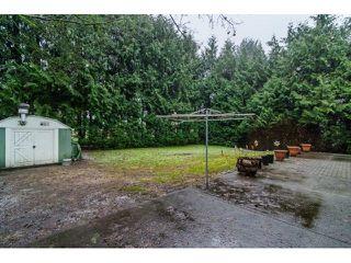 Photo 13: 20616 TYNER Avenue in Maple Ridge: Northwest Maple Ridge House for sale : MLS®# R2246289