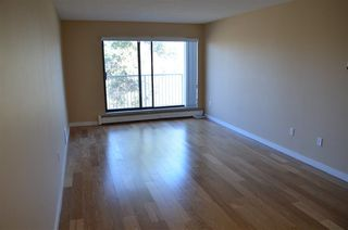 Photo 4: 301 8500 LANSDOWNE ROAD in Richmond: Brighouse Condo for sale : MLS®# R2247909