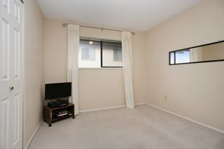Photo 13: 2364 ANORA Drive in Abbotsford: Abbotsford East House for sale : MLS®# R2251133