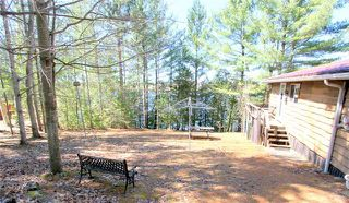 Photo 13: 30 Miller Street in Kawartha Lakes: Rural Eldon House (Bungalow) for sale : MLS®# X4111081