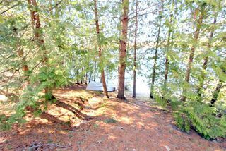 Photo 14: 30 Miller Street in Kawartha Lakes: Rural Eldon House (Bungalow) for sale : MLS®# X4111081