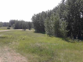 Photo 5: 22 52229 Rng Rd 25: Rural Parkland County Rural Land/Vacant Lot for sale : MLS®# E4122417