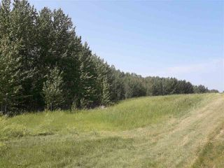 Photo 3: 22 52229 Rng Rd 25: Rural Parkland County Rural Land/Vacant Lot for sale : MLS®# E4122417