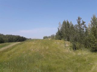 Photo 4: 22 52229 Rng Rd 25: Rural Parkland County Rural Land/Vacant Lot for sale : MLS®# E4122417