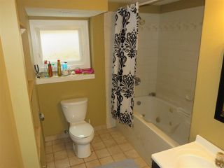 Photo 14: 4512 18A Avenue NW in Edmonton: Zone 29 House for sale : MLS®# E4127755