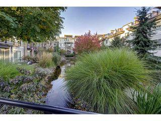 "Photo 13: 107 6688 120 Street in Surrey: West Newton Condo for sale in ""Salus"" : MLS®# R2312472"