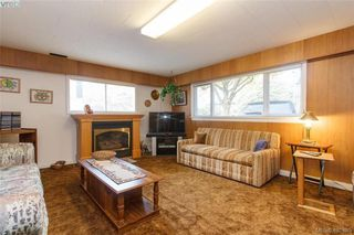Photo 16: 919 Parklands Drive in VICTORIA: Es Gorge Vale Single Family Detached for sale (Esquimalt)  : MLS®# 401885