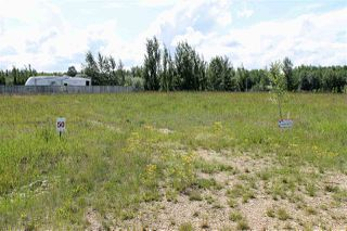 Photo 5: 609 Pintail Drive: Rural Camrose County Rural Land/Vacant Lot for sale : MLS®# E4136557