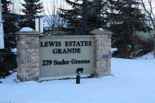 Photo 23: 403 279 Suder Greens Drive in Edmonton: Zone 58 Condo for sale : MLS®# E4139000