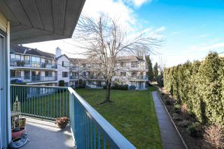 Photo 16: 211 1755 SALTON Road in Abbotsford: Central Abbotsford Condo for sale : MLS®# R2330629