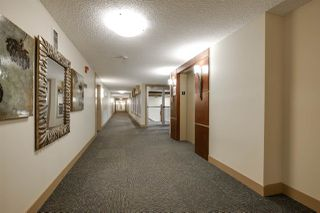 Photo 6: 209 4450 MCCRAE Avenue in Edmonton: Zone 27 Condo for sale : MLS®# E4140133