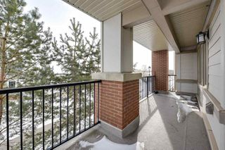 Photo 28: 209 4450 MCCRAE Avenue in Edmonton: Zone 27 Condo for sale : MLS®# E4140133