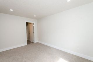 Photo 18: 1319 HAINSTOCK Way in Edmonton: Zone 55 House for sale : MLS®# E4141205
