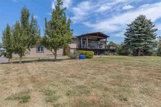 Photo 17: 41706 KEITH WILSON Road in Sardis - Greendale: Greendale Chilliwack House for sale (Sardis)  : MLS®# R2339627