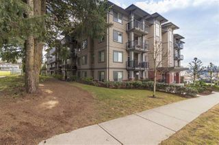 "Photo 1: 203 33898 PINE Street in Abbotsford: Central Abbotsford Condo for sale in ""GALLANTREE"" : MLS®# R2341078"