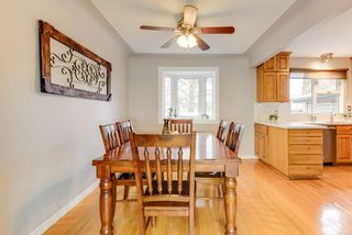 Photo 11: 10912 148 Street in Edmonton: Zone 21 House for sale : MLS®# E4151034