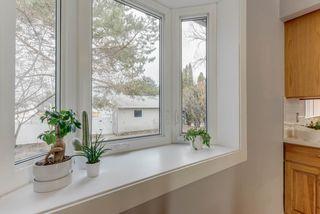 Photo 12: 10912 148 Street in Edmonton: Zone 21 House for sale : MLS®# E4151034