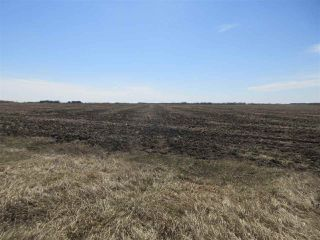 Photo 3: RR 260 Twp Rd 564: Rural Sturgeon County Rural Land/Vacant Lot for sale : MLS®# E4152051