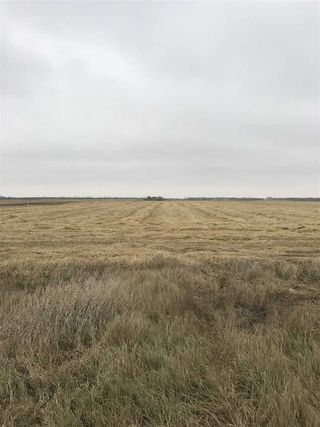 Photo 4: RR 260 Twp Rd 564: Rural Sturgeon County Rural Land/Vacant Lot for sale : MLS®# E4152051