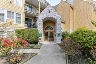 "Photo 19: 107 5555 13A Avenue in Delta: Cliff Drive Condo for sale in ""WINDSOR WOODS - THE CAMPTON"" (Tsawwassen)  : MLS®# R2361426"