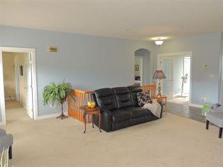 Photo 14: 69 HILLSBOROUGH Heights: Rural Sturgeon County House for sale : MLS®# E4167414
