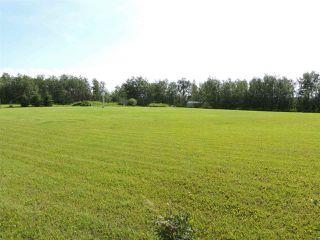 Photo 26: 69 HILLSBOROUGH Heights: Rural Sturgeon County House for sale : MLS®# E4167414