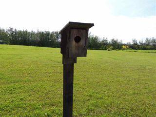 Photo 27: 69 HILLSBOROUGH Heights: Rural Sturgeon County House for sale : MLS®# E4167414
