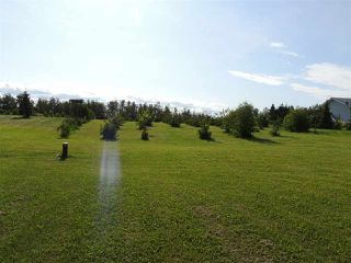 Photo 23: 69 HILLSBOROUGH Heights: Rural Sturgeon County House for sale : MLS®# E4167414