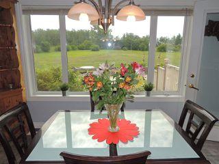 Photo 9: 69 HILLSBOROUGH Heights: Rural Sturgeon County House for sale : MLS®# E4167414